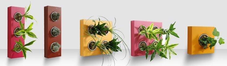 Flores en la pared minitangerine - Soportes para colgar macetas ...